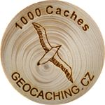 1000 Caches