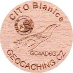 CITO Blanice