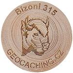 Bizoni 315