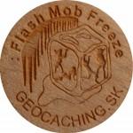 : Flash Mob Freeze