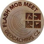 Flash Mob Meet