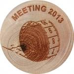 MEETING 2013