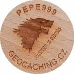 PEPE999