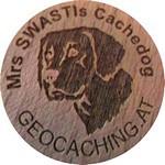 Mrs SWASTIs Cachedog