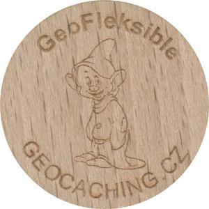 GeoFleksible