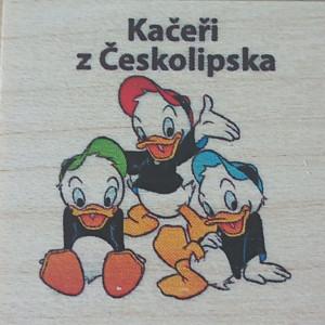 Kačeři z Českolipska