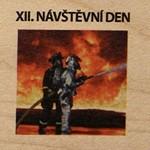 XII. NÁVŠTĚVNÍ DEN