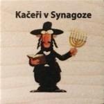 Kačeři v Synagoze