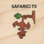 SAFARICI T5