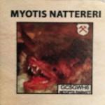 MYOTIS NATTERERI