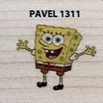 Pavel 1311