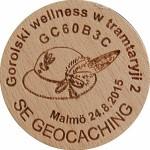 Gorolski wellness w tramtaryji 2