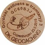 Gorolski wellness w tramtaryji 3