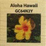 ALOHA HAWAII  GC64N2Y