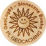 GeoLog81 - Słoneczne Busko