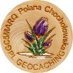 GC5MARQ Polana Chochołowska