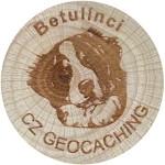 Betulínci