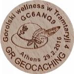 Gorolski wellness w tramtaryji 4