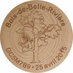 Bois-de-Belle-Riviére