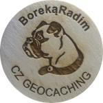 BorekaRadim
