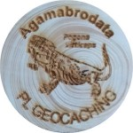 Agamabrodata