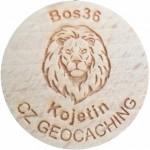Bos36
