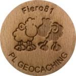 Fiero81