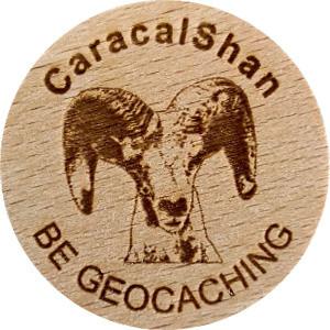 CaracalShan