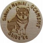 Sakura Namiki - GC6M3MT Shiba'ke
