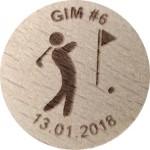 GIM #6