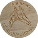 Amina 43