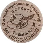 Gorolski wellness w Tramtaryji 9