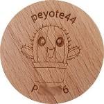 peyote44