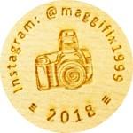 maggifix1999
