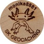 monika8881