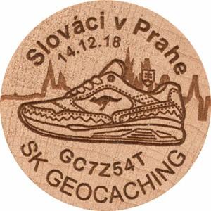 Slováci v Prahe
