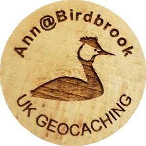Ann@Birdbrook