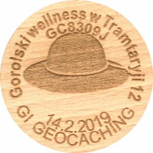 Gorolski wellness w Tramtaryji 12