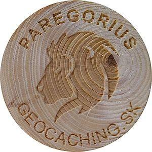 PAREGORIUS