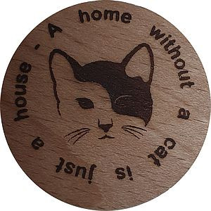 A Home without a cat is just a housse
