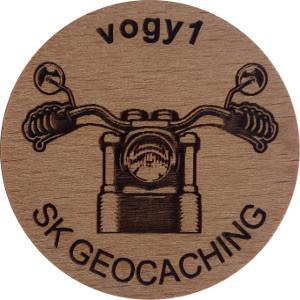 vogy1
