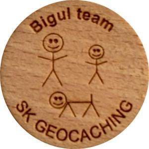 Bigul team