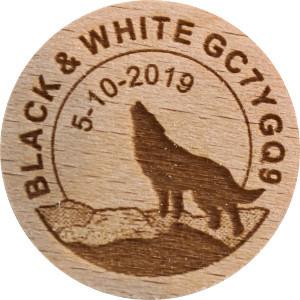 BLACK & WHITE GC7YGQ9
