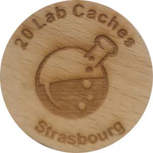 20 lab Caches