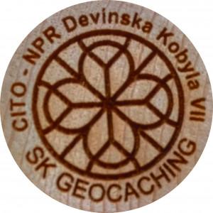 CITO - NPR Devínska Kobyla VII
