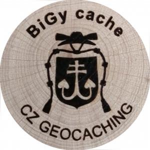 BiGy cache
