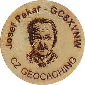 Josef Pekař - GC8XVNW