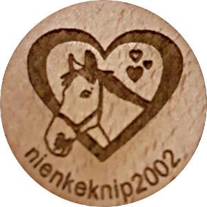 nienkeknip2002