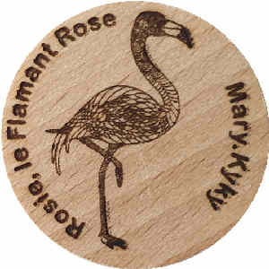 Mary.Kyky Rosie, le Flamant Rose