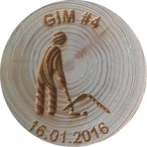 GIM #4
